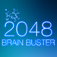 2048 Brain Buster